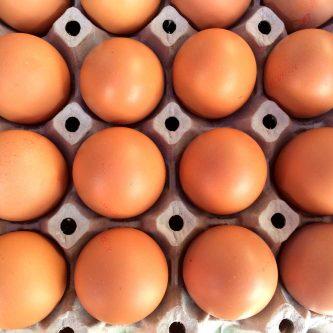 Van-beek-trading-eieren-grijs